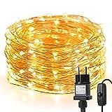 LE 10M LED Lichterkette Draht aus Kupferdraht, 100 LEDs, Wasserdicht...