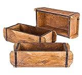 BigDean 3X Ziegelform 32x14x9 cm - EIN-Kammer - Vintage Holzkiste mit...
